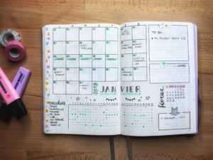bujo monthly log